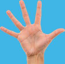 main cinq doigts écartés