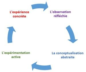 le cycle de Kolb