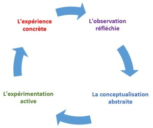 le cycle de Kolb