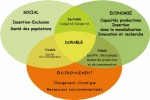 Les 3 piliers du développement durable