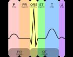 rapport d'activité du coeur