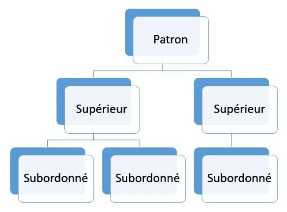 structure verticale d'une entreprise classique