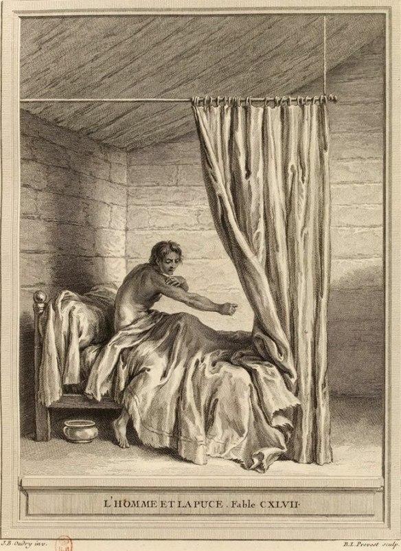L'homme et la puce de Jean de La Fontaine