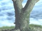 arbre et herbe