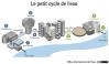 le petit cycle de l'eau